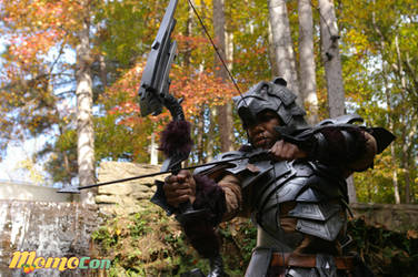 Nordic carved armor -- skyrim by fevereon