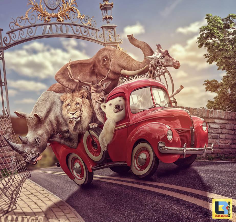 Fuga do Zoo - Zoo Escape by premierluis