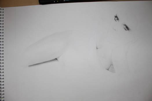 Drawing in progress 2