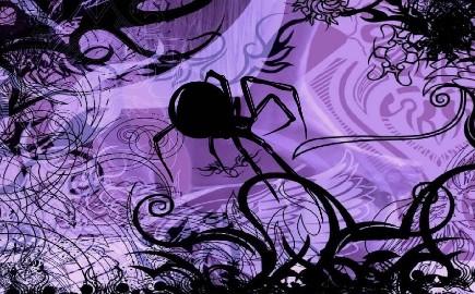 purple_spider_by_animals77-d4nwwhc.jpg