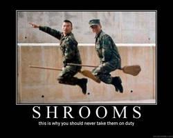 Shrooms by Dark-blood-angel