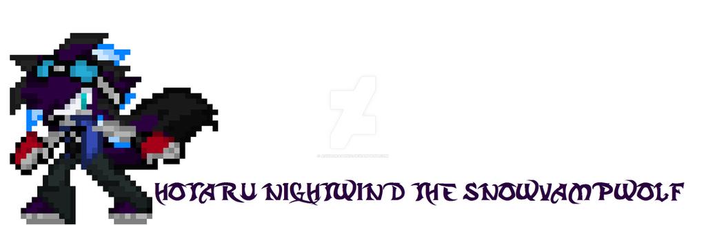 Hotaru NightWind 2019 by ZenNightWingDragon