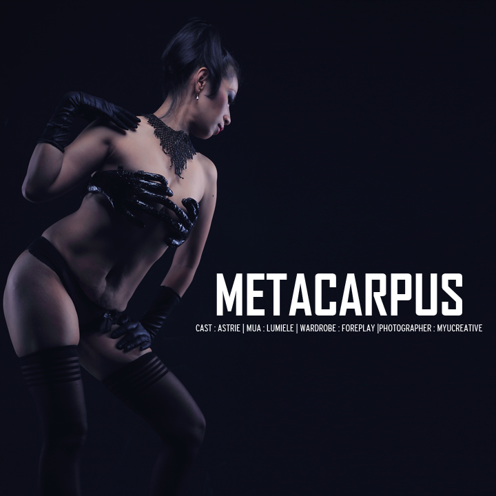 Metacarpus 1 by myucreative