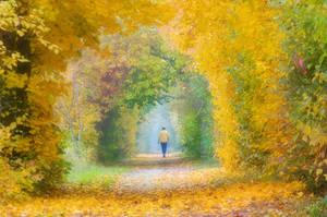 Autumn of my live ...