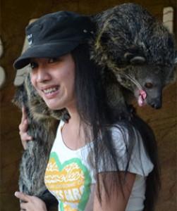 angelielle's Profile Picture