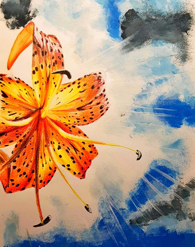 Tiger lily by agree-to-dissagree