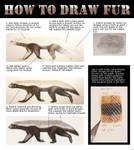 Tutorial: How to draw fur by agree-to-dissagree