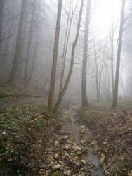 Fog16