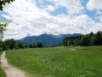 Landscape 140