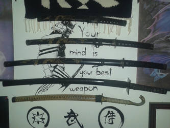 Ironic Samurai by acskrisz