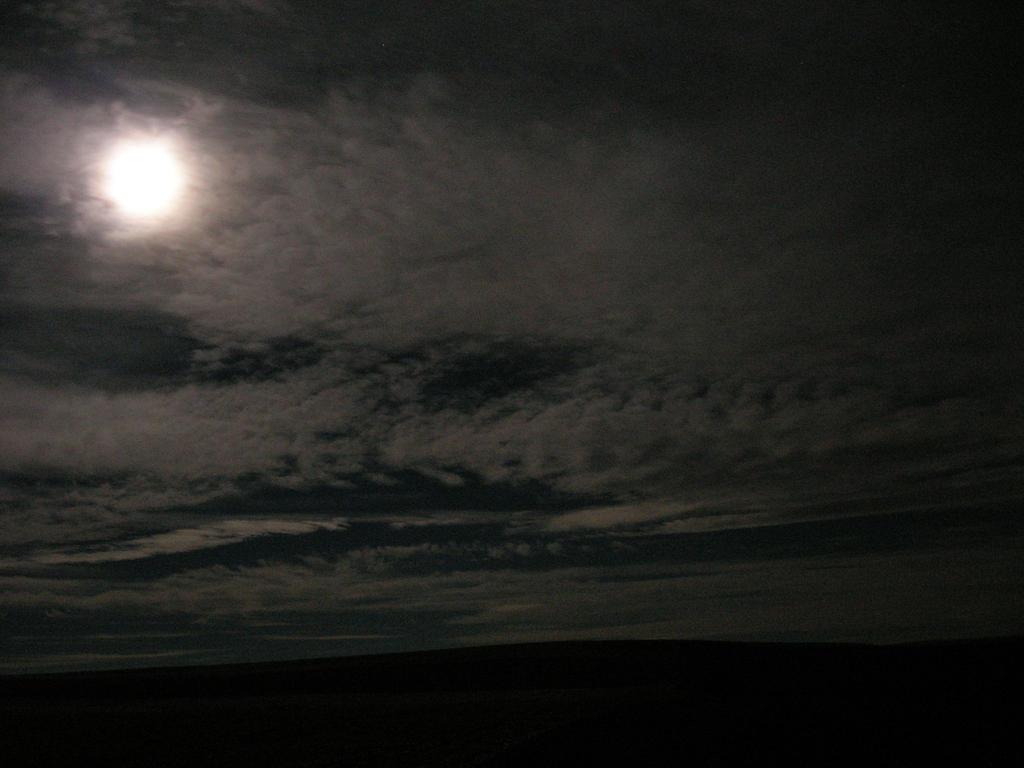 Desert Night by Razor-Kat