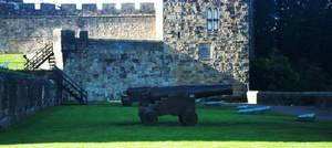Castle Cannon Stock 1