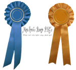 Rosette Ribbon Prize PNG Stock