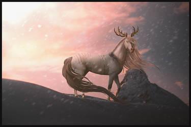 only the wild ones by lovelyskylark