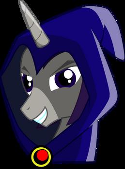 Raven pony