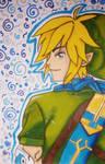 Link ~ Legend of Zelda