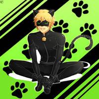[Miraculous Ladybug] Chat noir by Biby-san