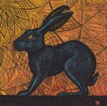 Egyptian Hare