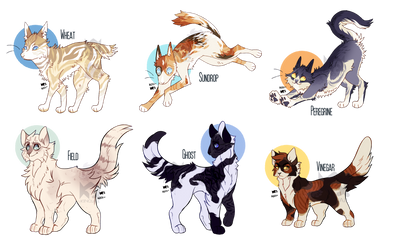 Collab Cat ADOPTS! || 4/6 OPEN