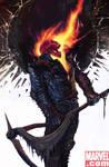 Ghost Rider is the Grimriper
