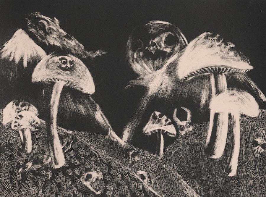 Mushroom Kingdom: A Bad Trip by punkerfairie