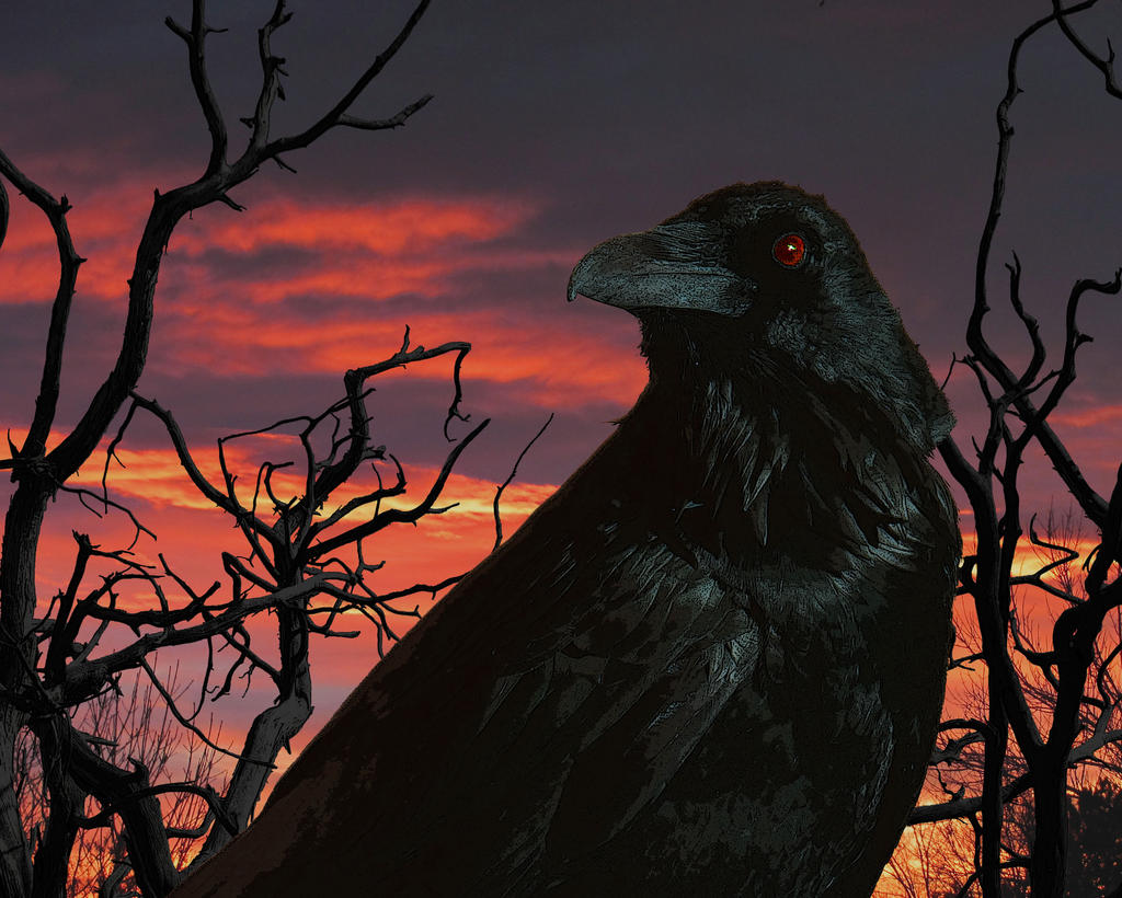 The Mystical Raven by SilverTop