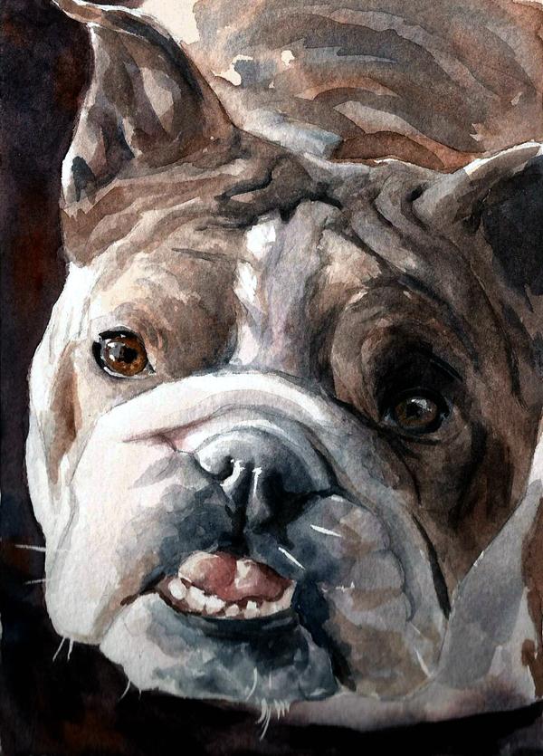 Bulldog by Pickleweasels