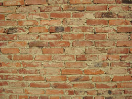 Brick Wall Stock by wuestenbrand