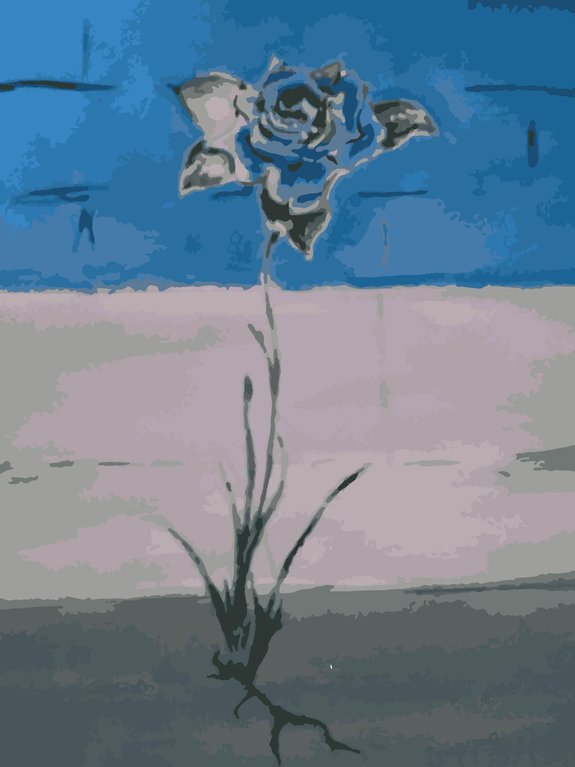 Wtrcolorrose