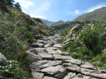 Mountain 53 - rocks path by Momotte2stocks
