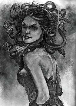 DSA Medusa