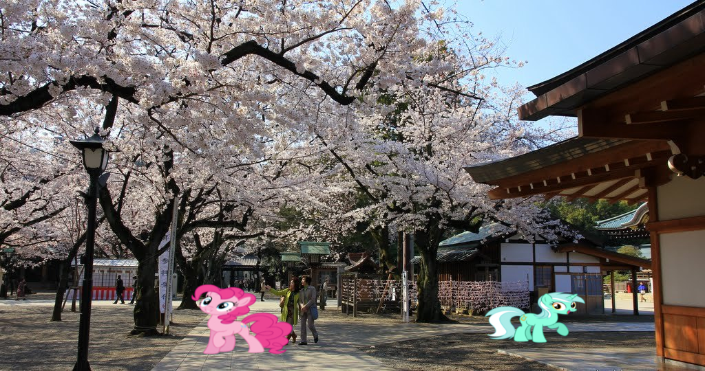 Ponies In Japan by Omnianimeman-brony