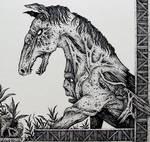 Kelpie by darkroots77