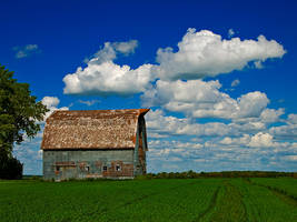 Story Barn by WayneBenedet