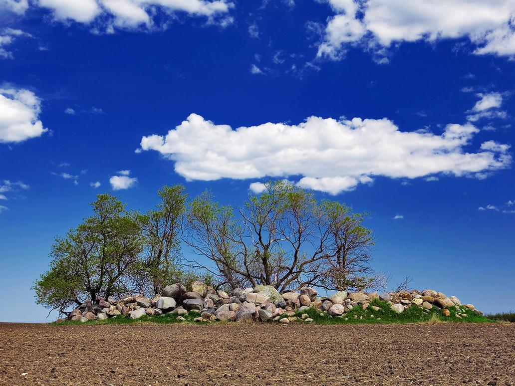 Stone Angels by WayneBenedet
