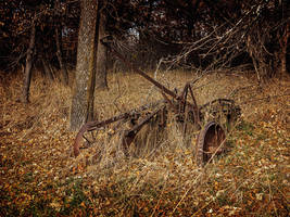 In the Fall of Life by WayneBenedet