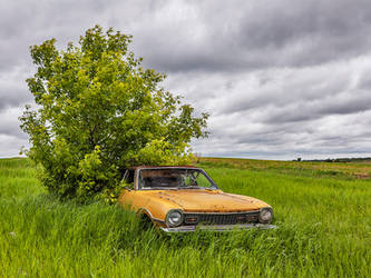 Poor Mans Caddy 2505 by WayneBenedet