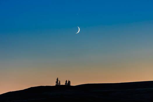 Sister Moon (WAB2065)