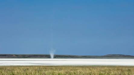 Salt Twister (WAB7119)