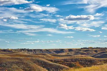 Alberta Bound (WAB6268)