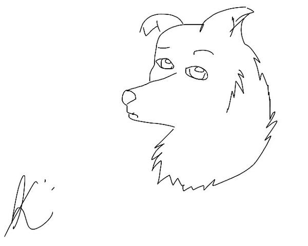 Line Drawing Dog Face : Dog face line drawing