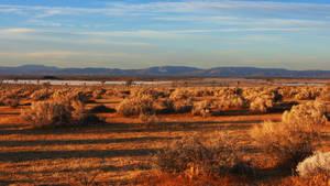 MacOS Mojave Wallpaper