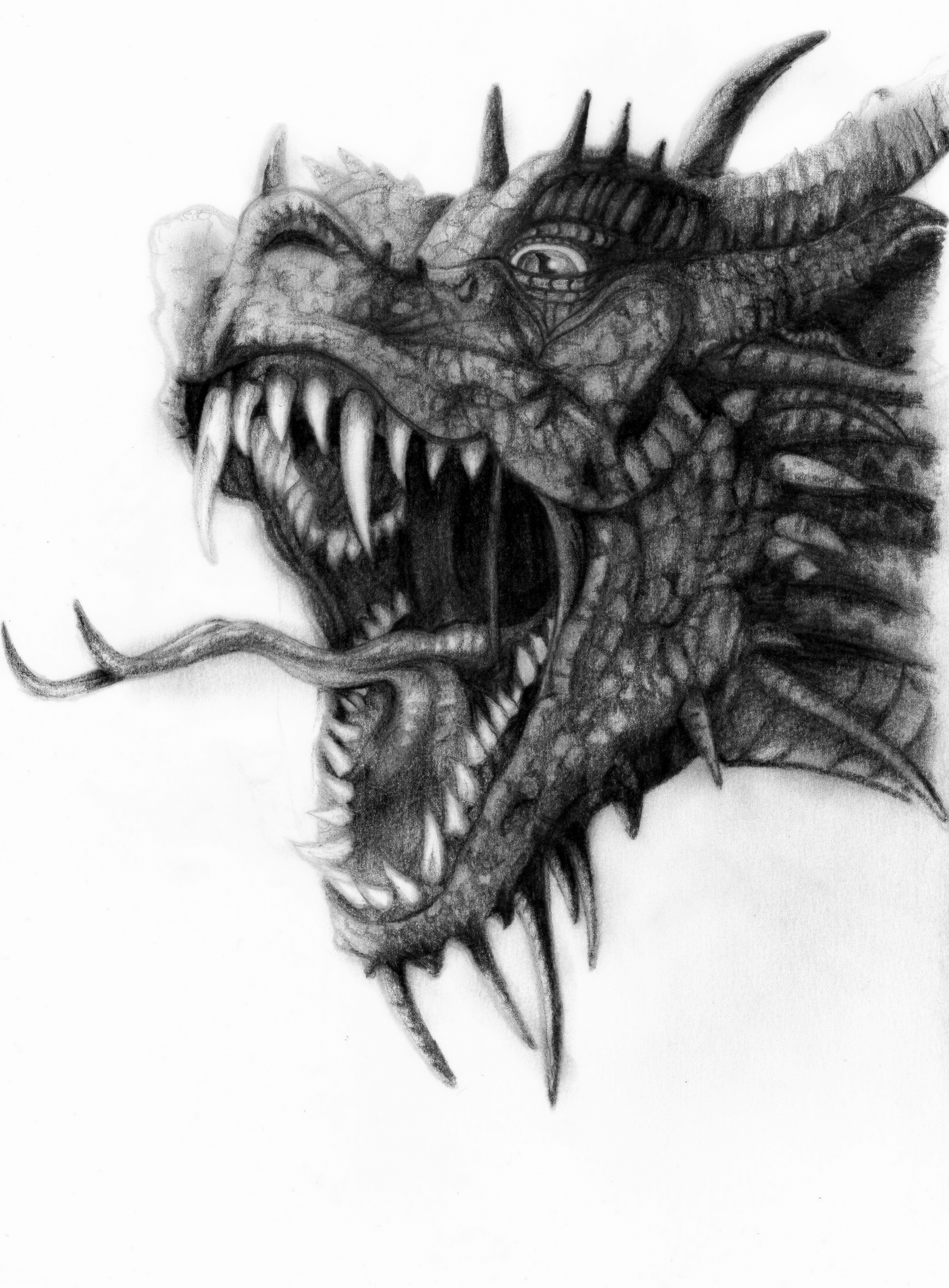 Dragon by deathlouis