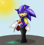 Sonic Sexy pose