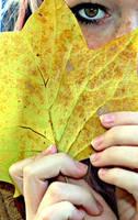 Autumn by callmepassionate