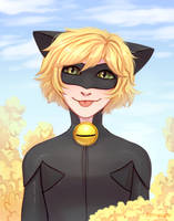 Chat Noir by Fenwaru