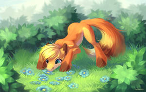 Fox and flowers by Fenwaru