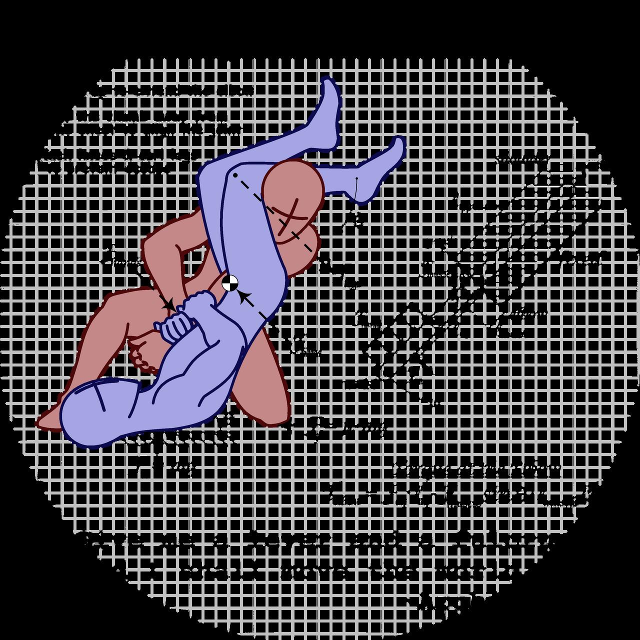 Anatomy of an Armbar by Skandranon01 on DeviantArt