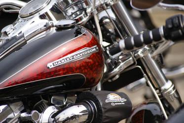 Harley Davidson by fr499y