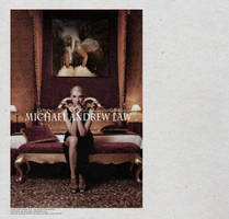 Michael Andrew Law Advertising Campaign 4 by michaelandrewlaw